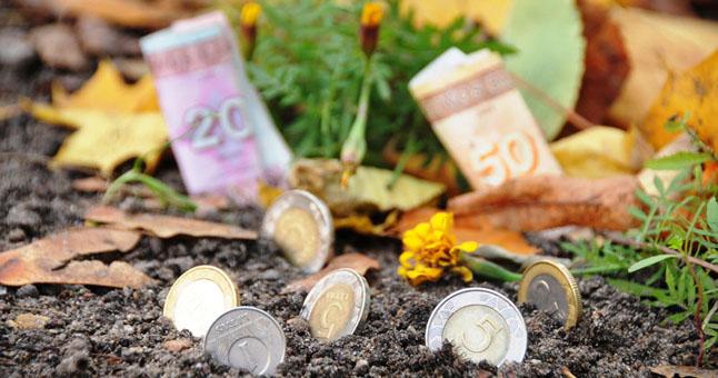 Žemės mokestis